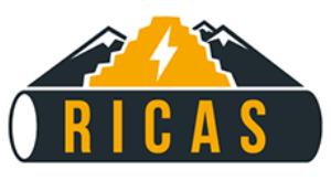 RICAS2020 logo