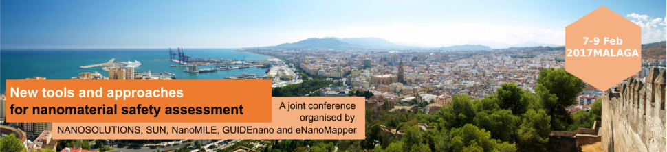 NMSA Conference Malaga