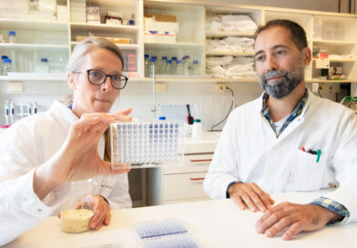 Powerful novel enzymes for greener consumer products – OXIPRO has arrived
